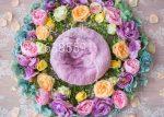 بک دراپ نوزاد رزهای رنگی