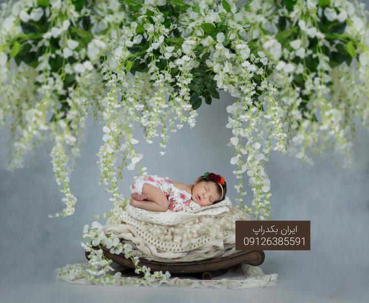 بک دراپ عکاسی نوزاد شاخه ی درخت سبز