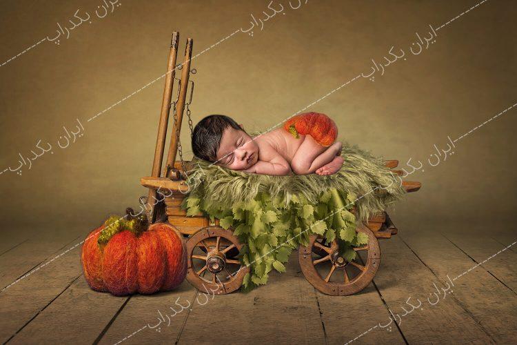 بک گراند پاییز و هالووین