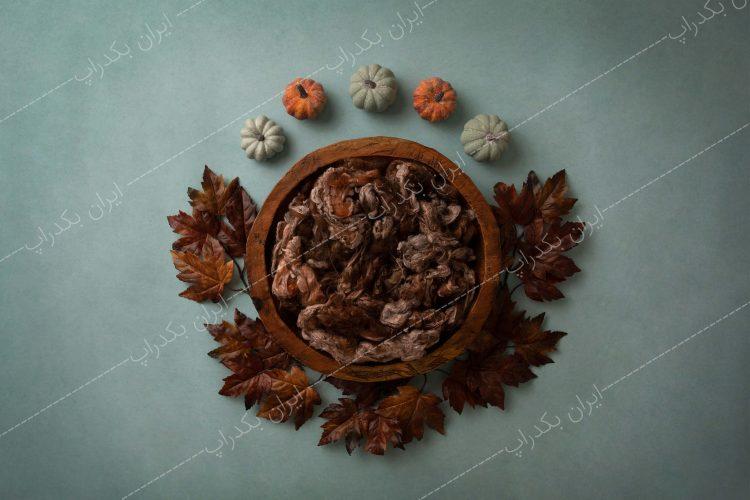خرید بک گراند عکاسی پاییز