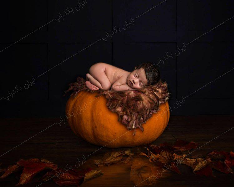 خرید بک دراپ هالووین