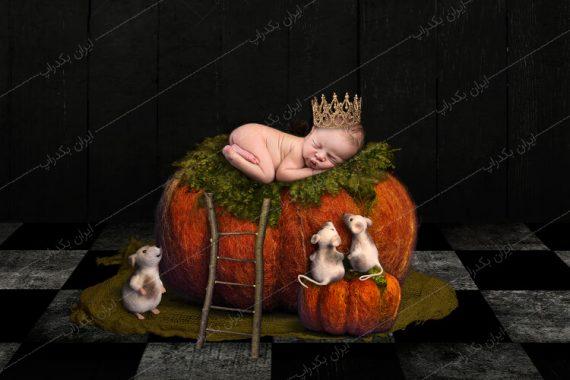 بک دراپ عکاسی هالووین