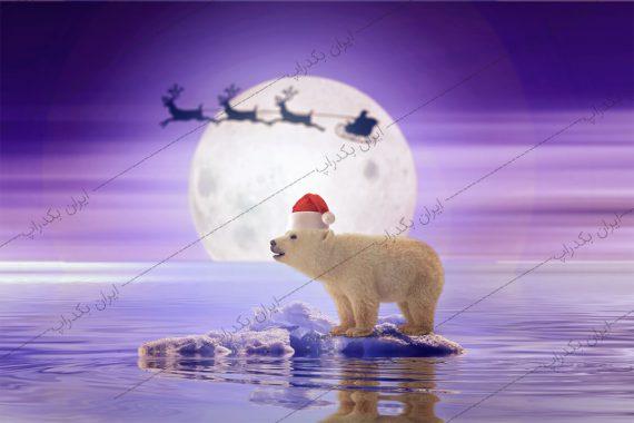بک دراپ کریسمس خرس قطبی و ماه