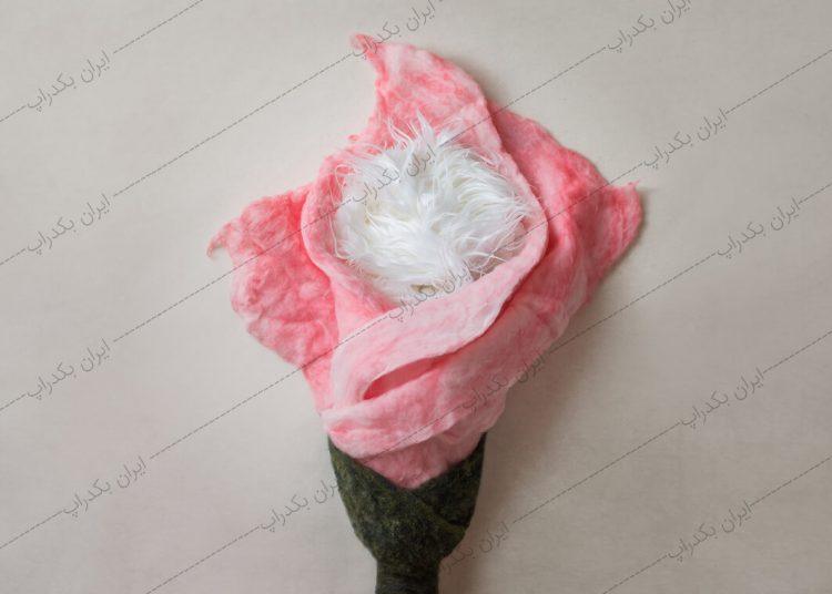بک دراپ نوزاد گل رز صورتی