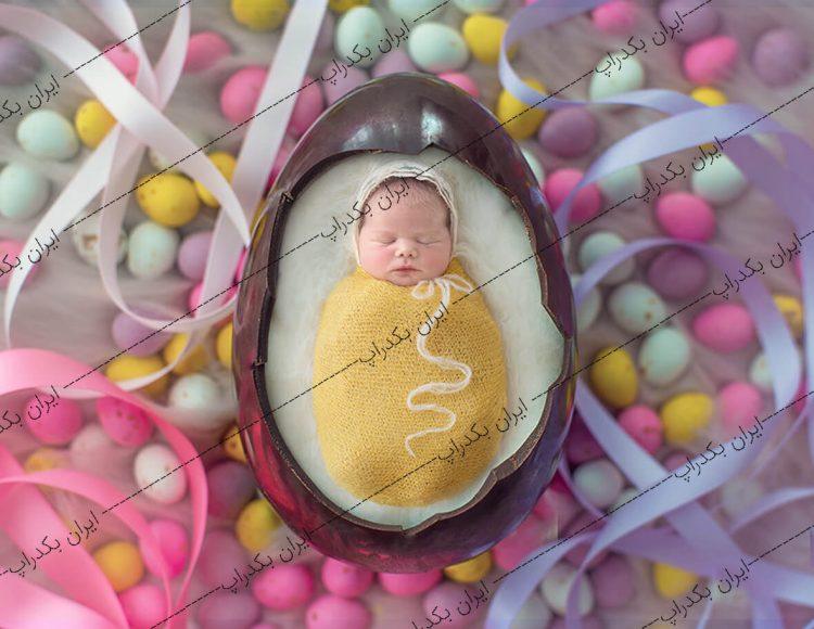 بک دراپ جایگاه تخم مرغی نوزاد
