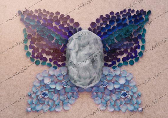 بک دراپ نوزاد پروانه