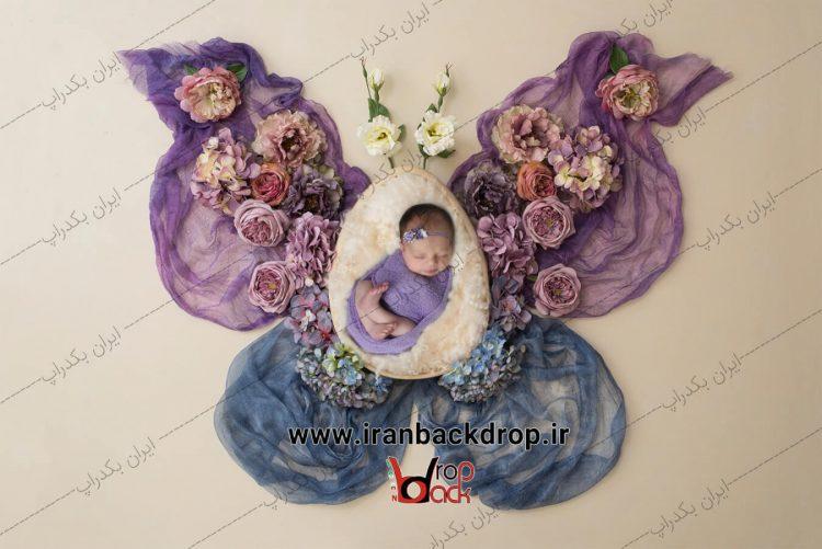 بک دراپ نوزاد پروانه بهاری