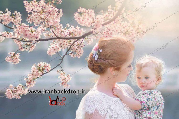 بک گراند بهار و شکوفه