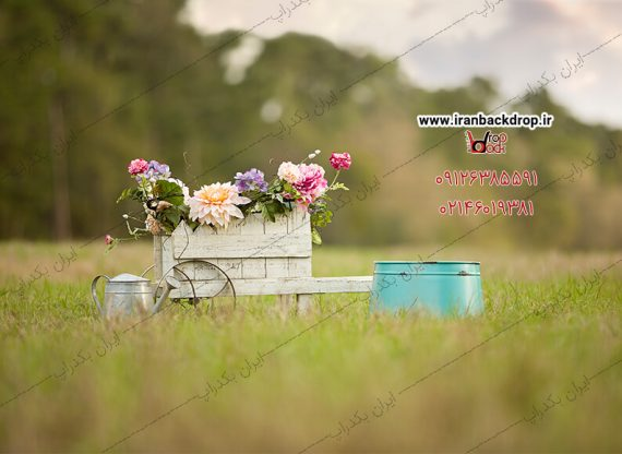 بک گراند عکاسی مزرعه