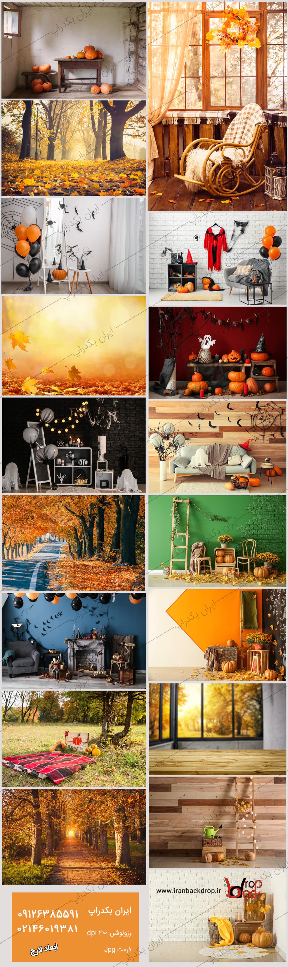مجموعه بک گراند پاییزی