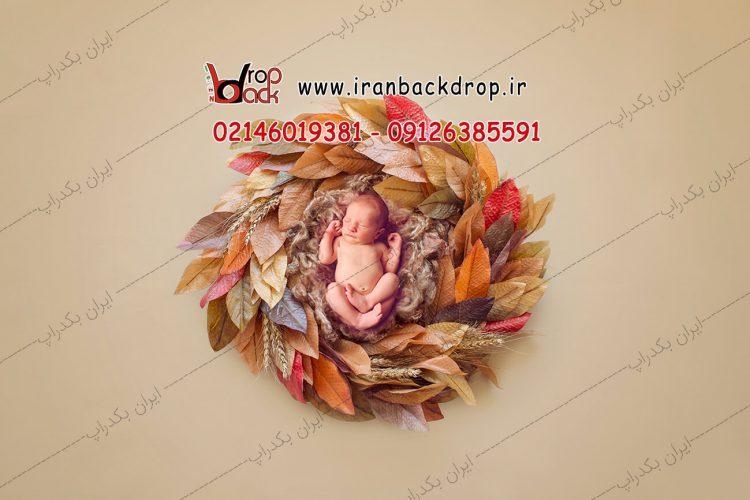 بک دراپ نوزادی برگ های پاییزی