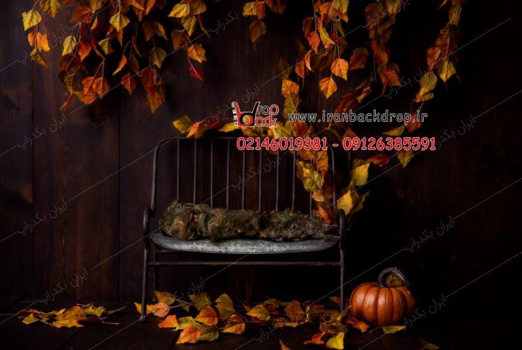 بک گراند عکاسی پاییز تیره