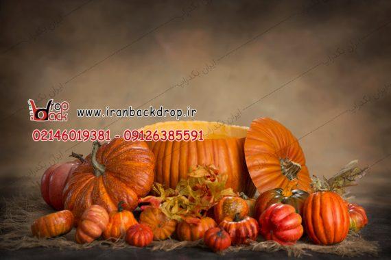 خرید تم هالووین
