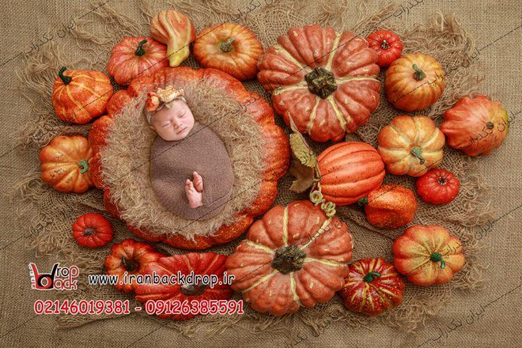 بک دراپ نوزادی هالووین
