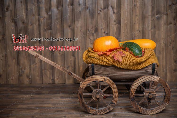 بک گراند عکاسی پاییزی