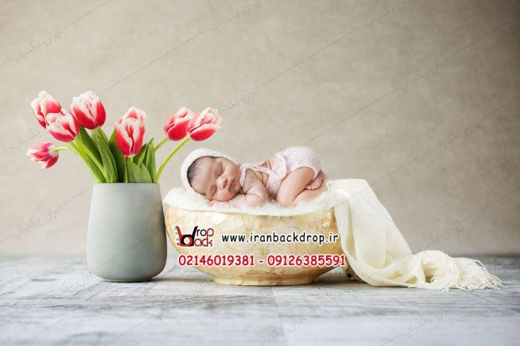بک دراپ نوزاد گل لاله